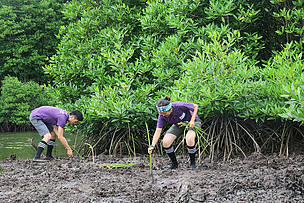 Youth leaders replanted mangrove which was destroyed before.