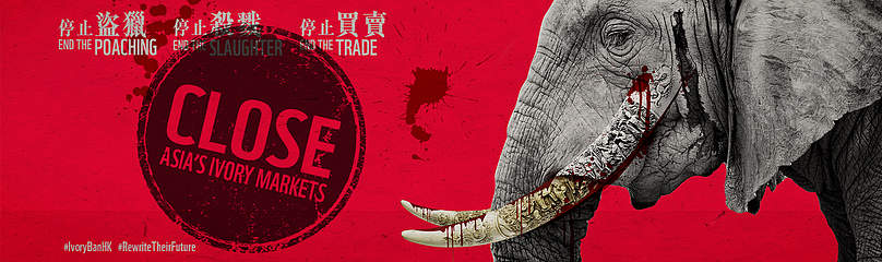 CLOSE ASIA'S IVORY MARKETS  	© WWF-Hong Kong