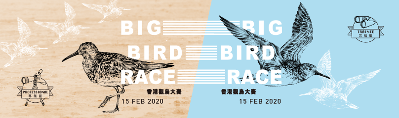 Big Bird Race 2020 topbanner  	© WWF-Hong Kong