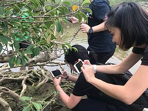 More than 750 participants in Hong Kong recorded the species they observed, including in Hoi Ha Wan  	© WWF-Hong Kong