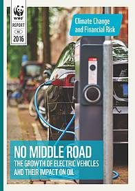 Climate change and financial risk. No Middle Road: The Growth of Electric Vehicles and their Impact ...  	© WWF-Hong Kong
